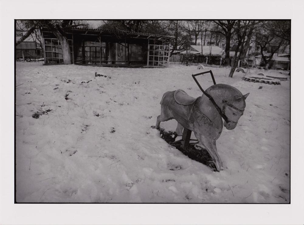 Foto aus Reisebilder, Pferdchen im Schnee, Murafa, Ukraine
