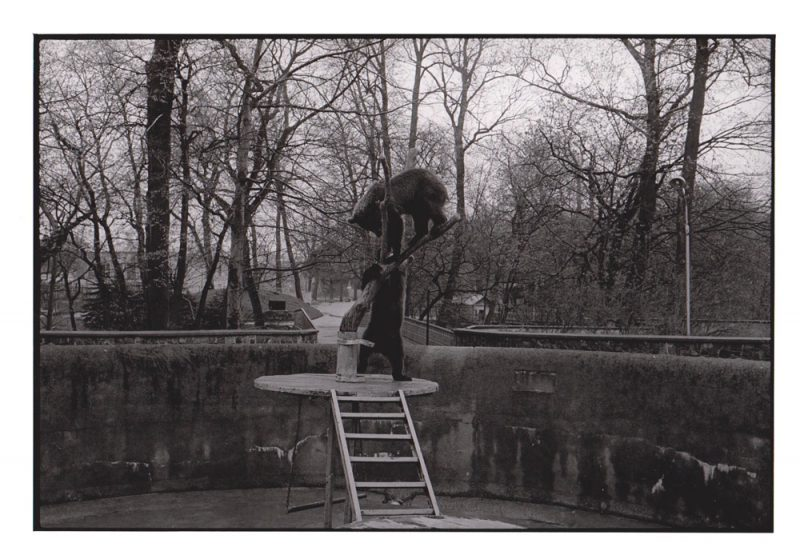 Foto aus Reisebilder, Zoo, Kaliningrad, Russland 1999